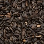 black-sunflower-seeds