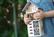 Green Schooling Rasstock Shutterstock