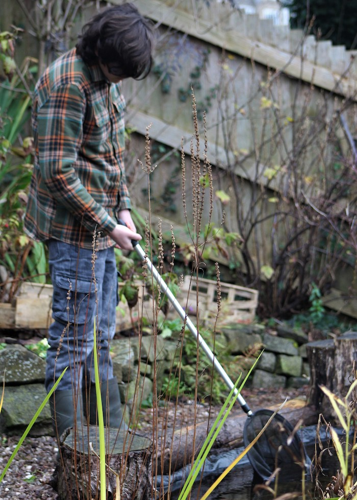 Green Fingered George sorting out pond
