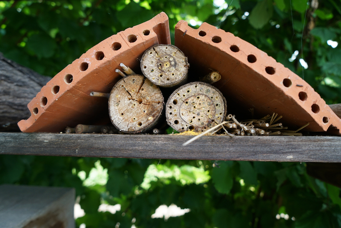 Bricks and twigs for a bee hotel