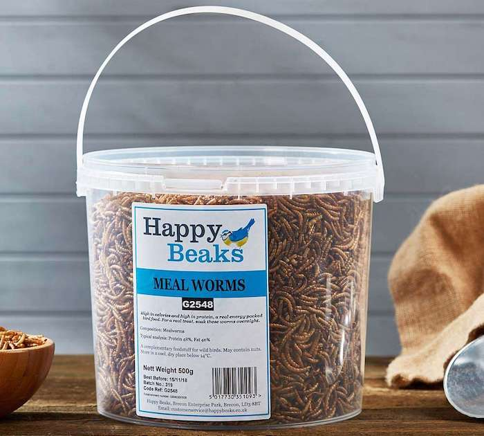 Meal worms from Happy Beaks